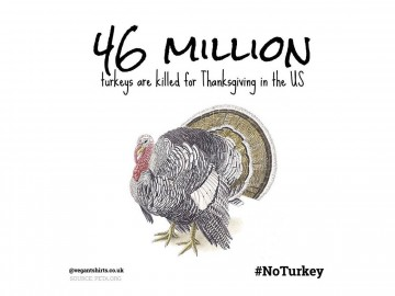 Be The Change This Thanksgiving – No Turkey